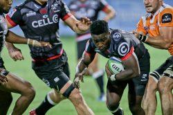 Lwazi Mvovo has 100 reasons to be the Sharks' bite in Brisbane