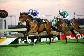 SA tracks make for safer racing