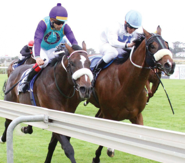 JOBURG BOUND. Kampala Campari (left), trained by Andre Nel, will be heading to Turffontein to race in the Grade 1 SA Classic over 1800m at Turffontein on Saturday 1 April.
