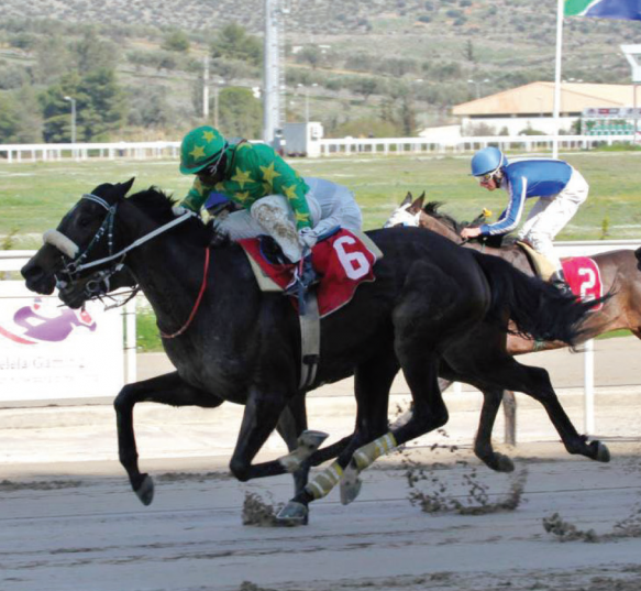 POPULAR VICTORY. Muzi Yeni wins the main race at Markopoulo Racecourse in Athens on Sunday, the Phumelela sponsored South African Races Cup.