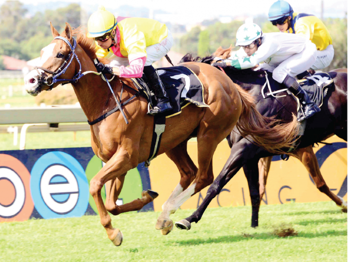 Trainers Justin Snaith and Brett Crawford dominate Race 6 at Kenilworth tomorrow