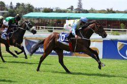 Punta Arenas set for triumphant return