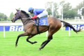 Tarry holds key to Guineas