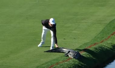 Cody Gribble is fearless when it comes to alligators. Photo: Screengrab.
