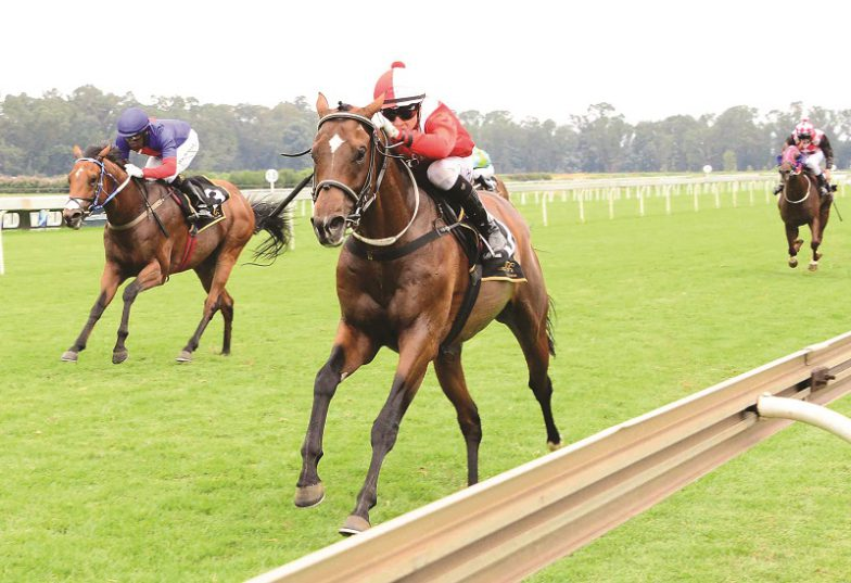 Apprentice Lyle Hewitson is unbeaten on Maximizer and the pair will team up again in Race 3 at the Vaal today.