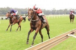 Follow Hewitson at Fairview