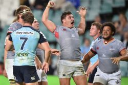 Gritty Kings star in our Super Rugby XV of the week