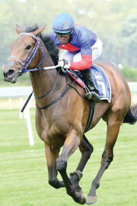 READY TO WIN. Safe Harbour should be at peak fitness and is the filly to beat in the R1-million HSH Princess Charlene Empress Club Stakes over 1600m at Turffontein tomorrow.