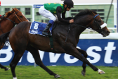 Marcus, Strydom to ride in Cape Winter Guineas