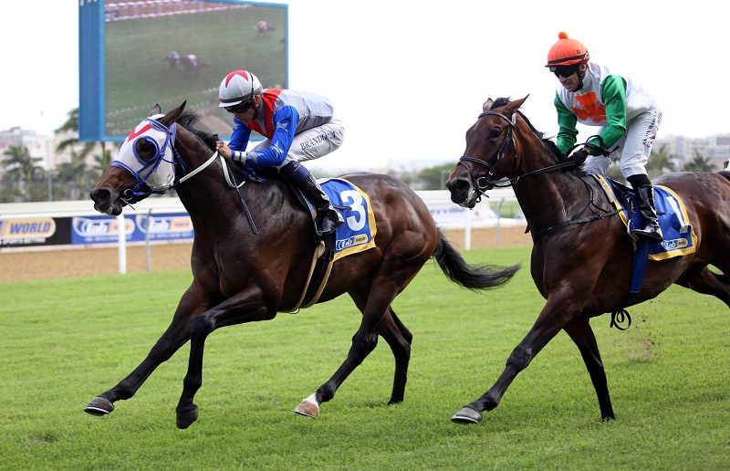 Celtic Captain has been supplemented into the R4-million Premier's Champions Challenge over 2000m at Turffontein next month but will need to win a MR 102 Handicap over 1400m at Greyville tonight if he is to have any chance of getting in.