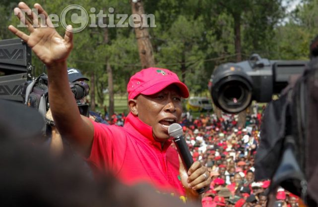 Julius Malema. Picture: Yeshiel Panchia