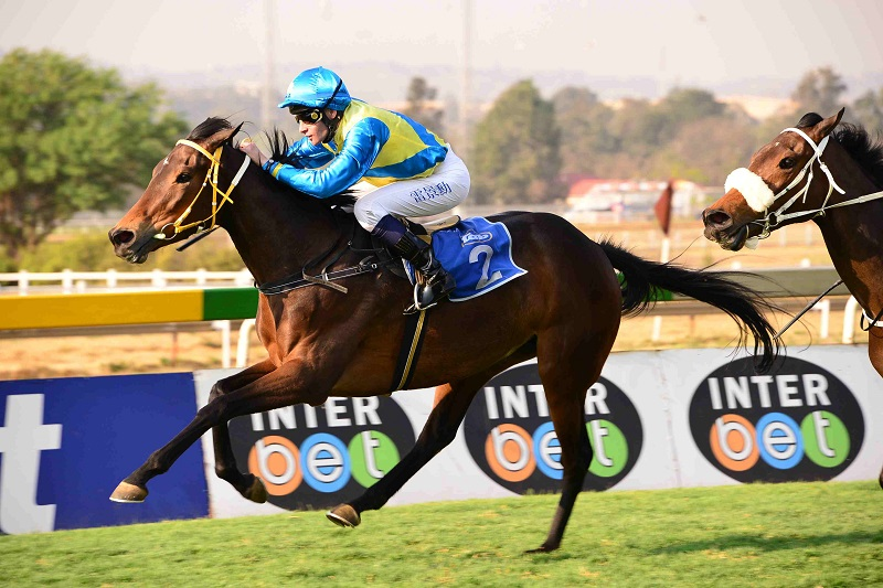 WELL HANDICAPPED. Fort Ember is one of the best handicapped runners in today's R1-million HSH Princess Charlene Empress Club Stakes (Grade 1) over 1600m at Turffontein and Piere Strydom makes her a Place Accumulator banker.