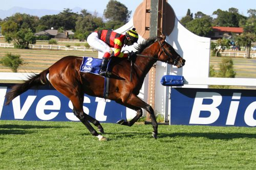 Waiting For Rain is weighted to turn the table on King Of The Corn in Race 6 over 2000m at Kenilworth today but the latter was coming back from a three-month layoff and is expected to improve.
