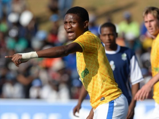 Motjeka Madisha of Sundowns during the MultiChoice Diski Challenge match between Platinum Stars and Mamelodi Sundowns at Nike Football Training Centre, A Field on September 24, 2014 in Soweto, South Africa. (Photo by Duif du Toit/Gallo Images)