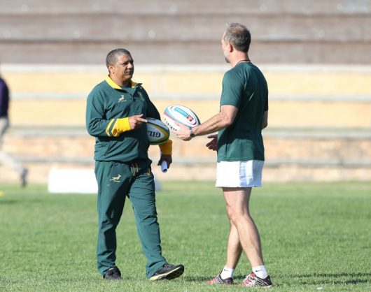 Allister Coetzee and Brendan Venter 'share the same values'. Photo: Carl Fourie/Gallo Images.