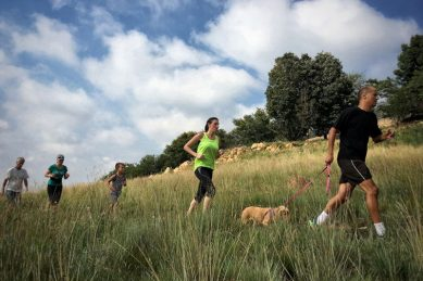 Determined parkrun organisers search for a solution