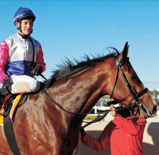EASY WIN. Dorset Noble returns to the winner's enclosure with Craig Zackey in the irons after victory in the Listed World Sports Betting East Cape Derby over 2400m at Fairview on Saturday. Picture: Pauline Herman Photography.