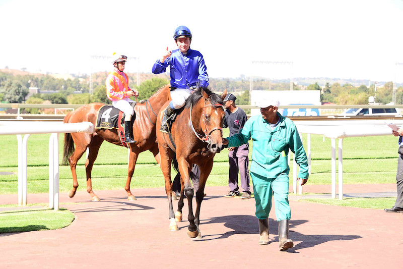 DROP IN CLASS. Tiger Flame has been running against some strong opposition and will appreciate facing weaker rivals in Race 6 at Turffontein.