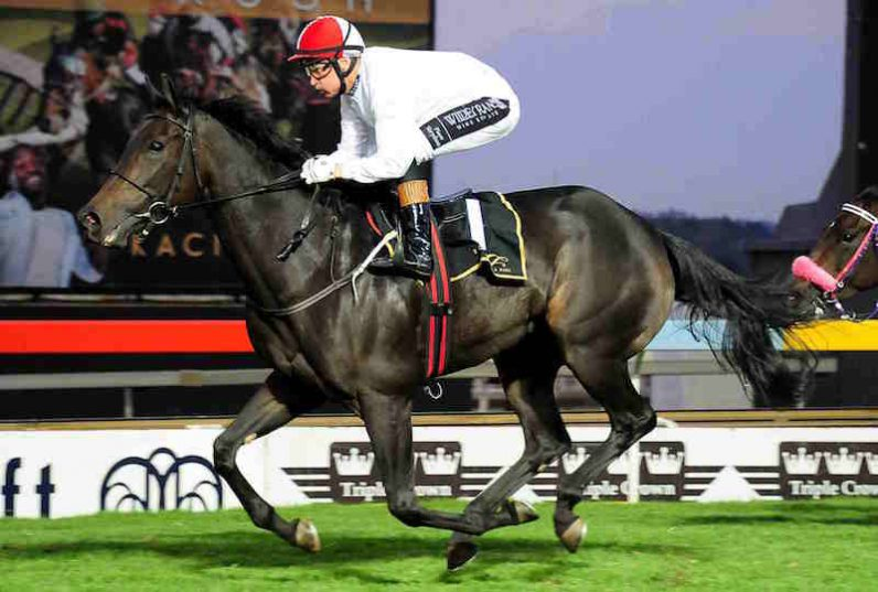 BEST RIDE. Polyphonic, who runs in Race 10 at Turffontein today, is Piere Strydom's best hope for a winner at the meeting.