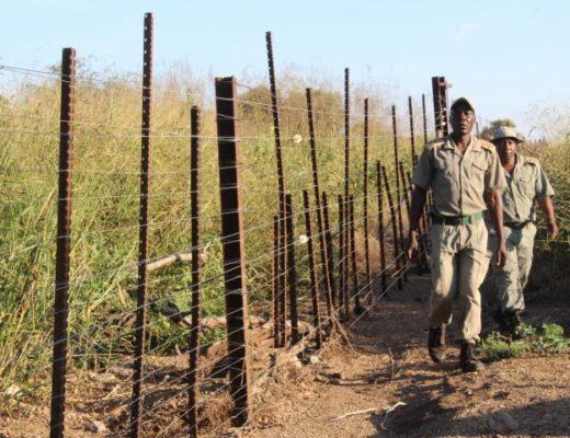 Anti-poaching team