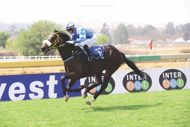 TIME TO DELIVER. Jubilee Line has been disappointing to follow but he looks to be close a mark where he can be competitive again. He will be tested in Race 6 over 2000m at the Vaal today.