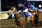 Querari Viking to get back on winning track