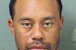 Tiger Woods: I'm receiving professional help