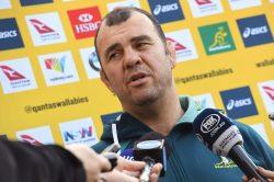 Wallabies coach calls fan whose Facebook post went viral