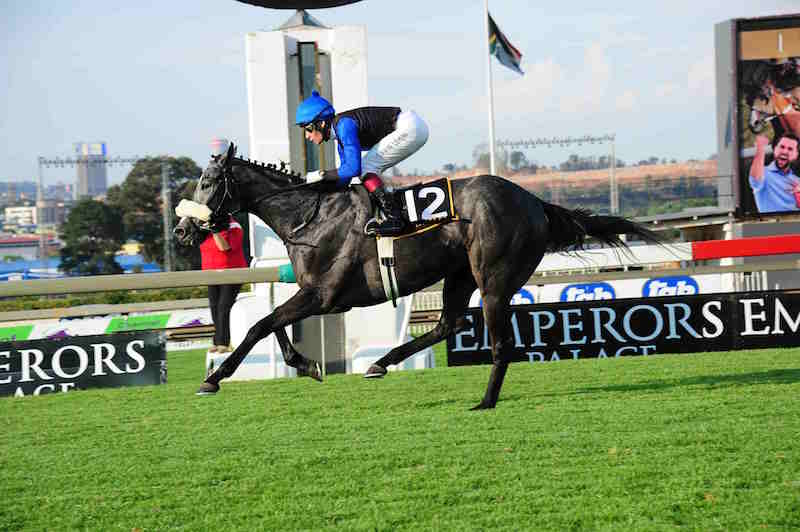 PIERE'S PICK: She's A Giver, who runs in Race 6 at Turffontein tomorrow, is Piere Strydom's best bet on the card.