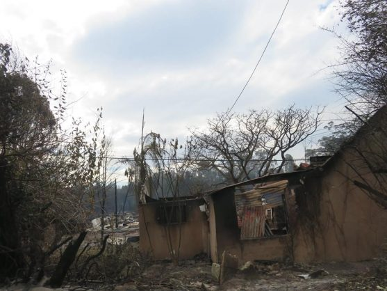 Knysna fires: Tally of destruction grows