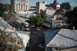 Photo and video feature: Bekezela, the Newtown community defying the Red Ants