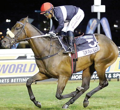 MUZI MAGIC. Ten Gun Salute won the Betting World 1900 under Muzi Yeni and the pair can make it a huge day for the connections in Saturday's Vodacom Durban July.