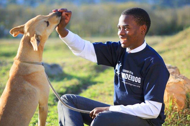 Cape Town's Underdog  Project puts township   kids together with animals to learn how to look after them. Picture supplied.