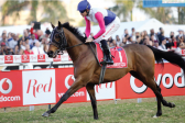 Gold Cup, Champions Cup to form Festival Of Racing