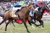Strong hand for Tarry in Grade 1 juvenile features