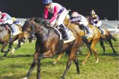 Marinaresco set for a Champions Cup double
