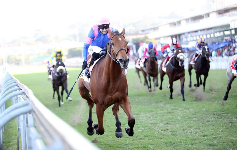 COURSE SUITED. Captain America is Piere Strydom's selection to win the Grade 1 World Sports Betting Champions Cup over 1800m at Greyville today.