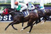 Champion joins Team Asia for Jockeys Challenge