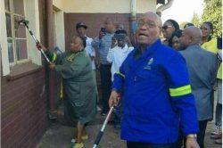 Malema again makes fun of 'cleaner' Zuma's lack of education