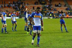 Super Rugby: Please stay in South Africa, begs Siya Kolisi