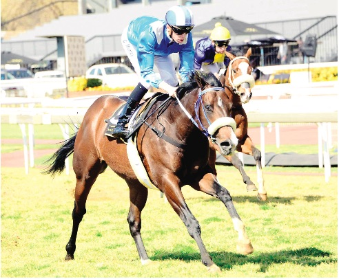 BANKER. Alwahsh, pictured winning his debut at the expense of The Puma, should follow up when he runs in Race 3 at the Vaal tomorrow.