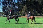 Jocks laud Durbanville track