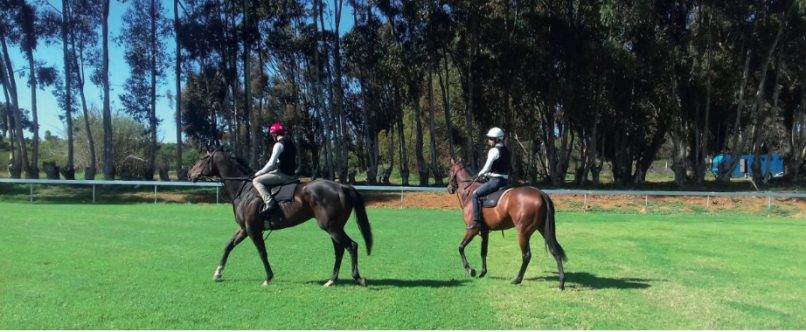 HAPPY. Jockeys Grant van Niekerk and Aldo Domeyer expressed their satisfaction at the newly laid Durbanville track yesterday. Pics upplied by Robert Bloomberg.