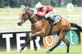 Vaal test for three-year-olds