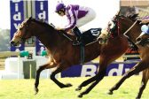 New Highveld season springs into action