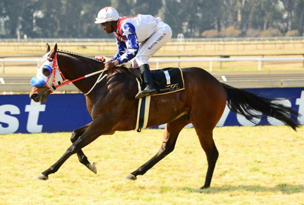FORM RUNNER. Inn  A Million has the best form in Race 5 at the Vaal today and with Gavin Lerena up looks a possible banker in all bets.