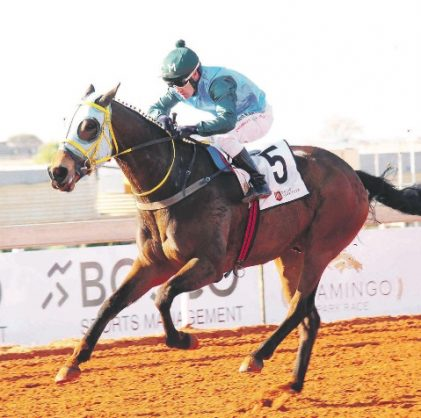 HOMETOWN WIN. Dodgy Itie runs out a comfortable winner of the R200,000 Racing Association Mile (Non-Black Type) at Flamingo Park on Saturday. He is owned and trainer by Cliffe Miller and ridden by Marco van Rensburg. Picture: JC Photographics.