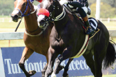 'Cheapies' favoured in two BSA Million races