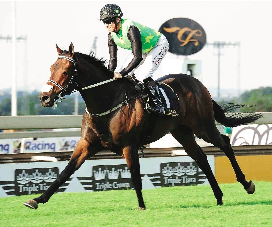 CHAMPION AGAIN. Legal Eagle was named Horse Of The Year for the second successive season at last night's Equus Awards dinner held at Emperors Palace.