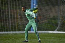 Nigeria lose goalkeeper Akpeyi to injury